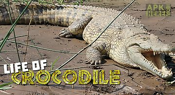 Life of crocodile - wild sim