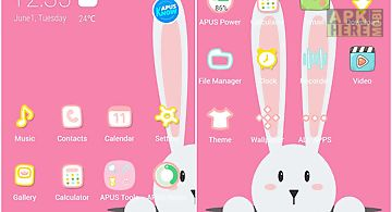 Rabbit-apus launcher theme