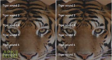Tiger sounds