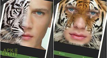 Animal face morph