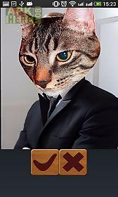 cat booth