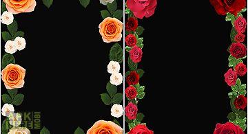 Roses flower photo frame