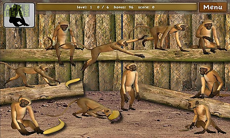 click! zoo