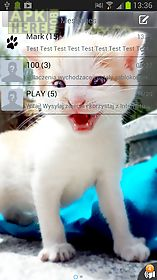 sweet kitty theme for go sms