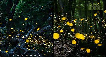 Fireflies by top  hq Live Wallpa..
