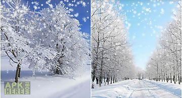 Winter: snow by orchid Live Wall..