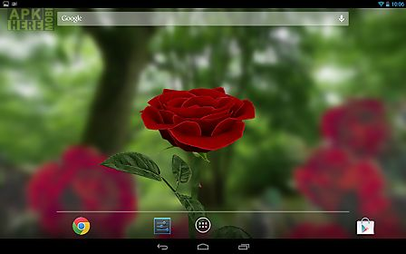 3d rose free live wallpaper for android free download at apk here 3d rose free live wallpaper voltagebd Gallery