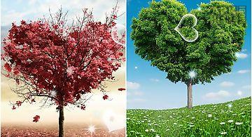 Love tree by pro  Live Wallpaper