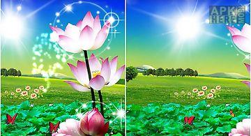 Beautiful lotus Live Wallpaper