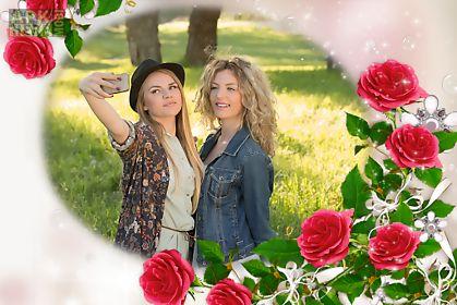 rose flowers frames
