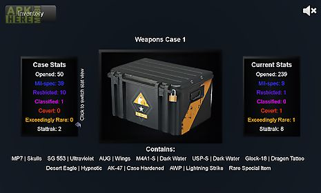 counter strike global offensive case
