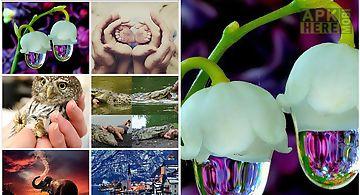 Photo gallery photopedia