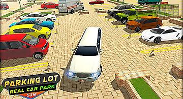 Parking lot: real car park sim