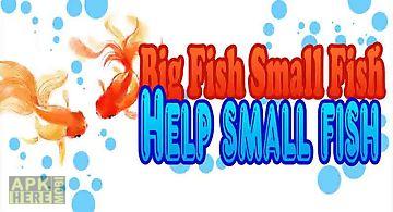 Big fish small fish - cutest nem..