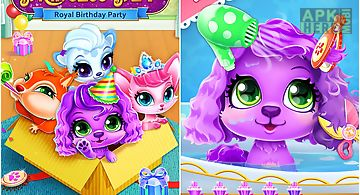 Princess pet hair salon