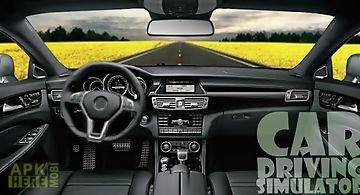 Driving car simulator