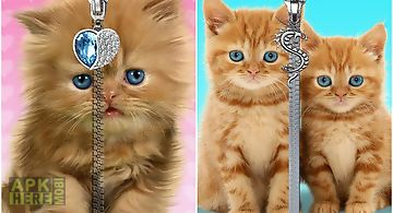 Cats lock screen. zipper.