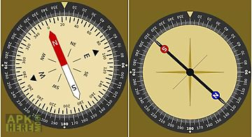 Steady compass