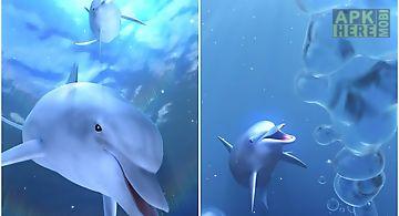 Dolphin blue ocean trial
