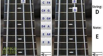 Bass fretboard addict free