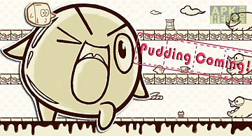 Pudding dash