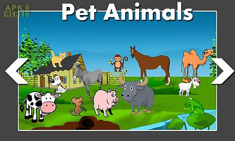 animal world game for kids