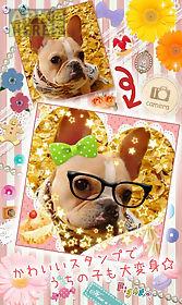 deco puri ☆photo sticker☆
