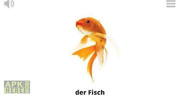 Lyrebird: learn german