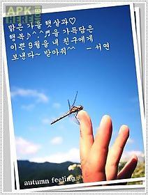 photo card! mfun