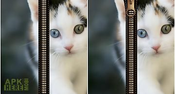 Cat zipper screen lock