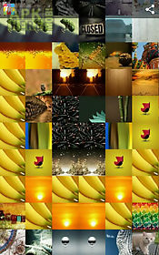 mosaicture lite - photo mosaic
