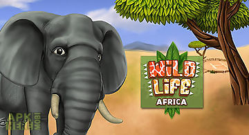 Pet world: wildlife africa