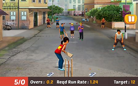 gully cricket game - 2016