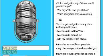 Voice navigation