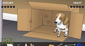 Poor little puppy