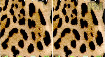 Leopard theme for go launcher