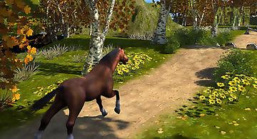 Run horse run