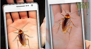 Cockroach hand funny joke