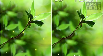Spring buds Live Wallpaper