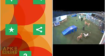 Spy cams free