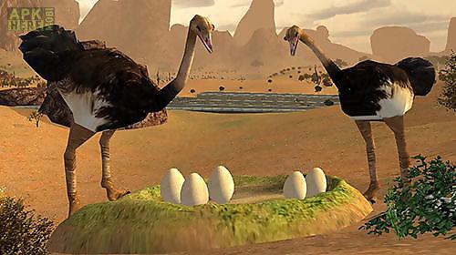 ostrich bird simulator 3d