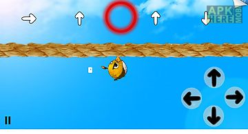 Hang bird: oscar saga