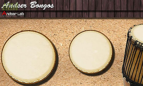 andser bongos