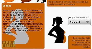 Calendario del embarazo gratis