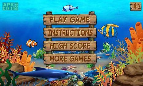 Play big fish games