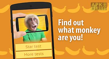 Face scanner: what monkey