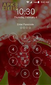 lock screen zipper