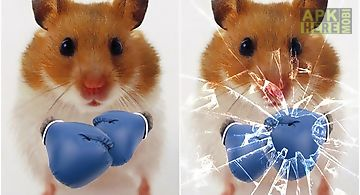 Funny hamster: cracked screen Li..