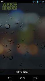 rain drops live 3d wallpaper  live wallpaper