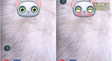 Zoo: cat Live Wallpaper